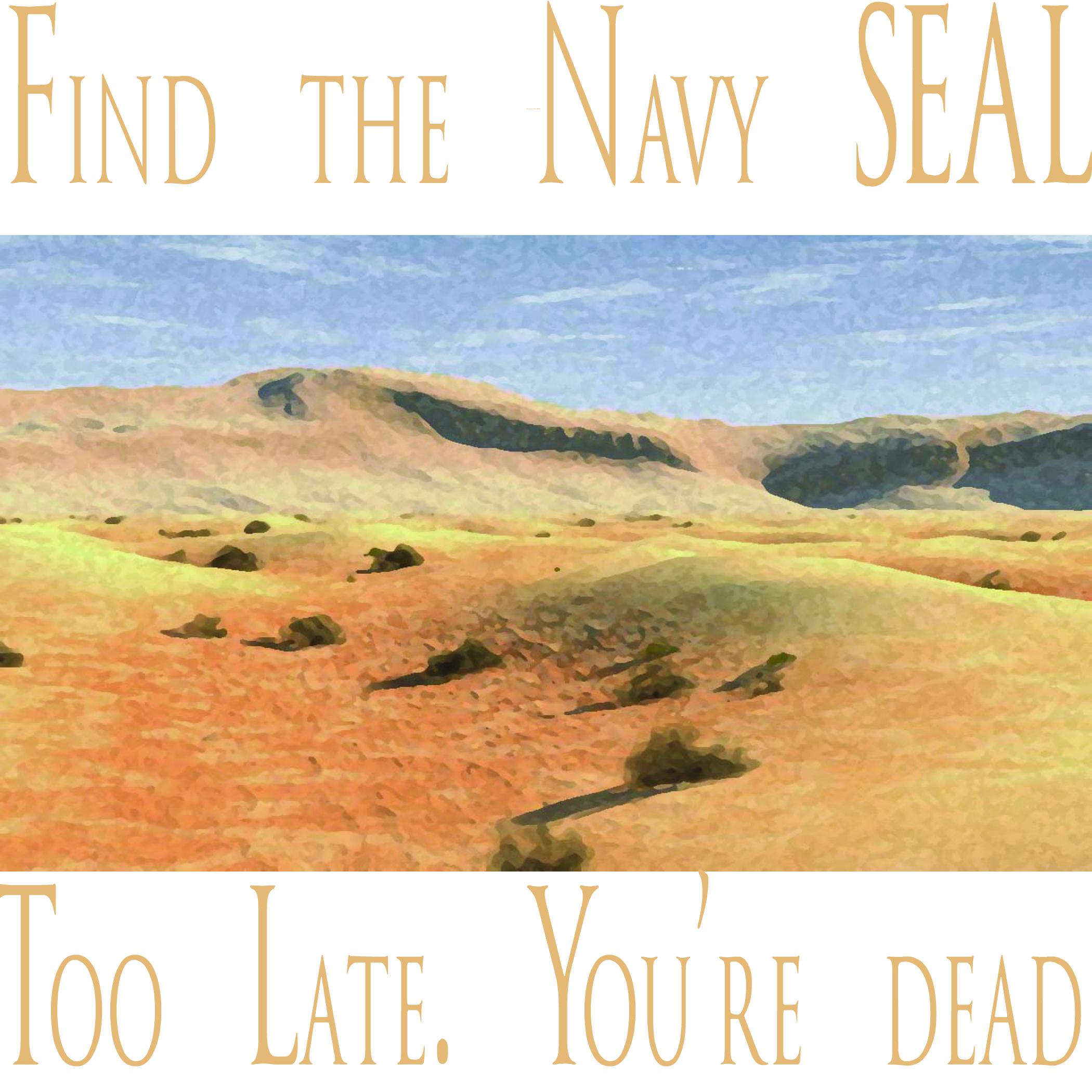 Where to meet navy seals